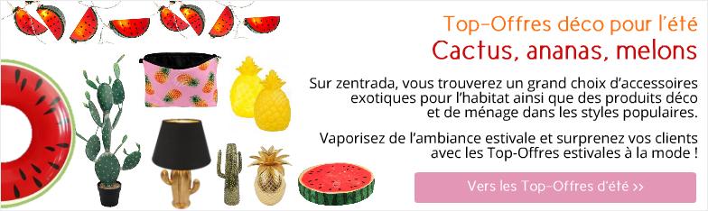 Deko-Hits Sommer Ananas Wassermelone Kaktus Deko Interior grossiste